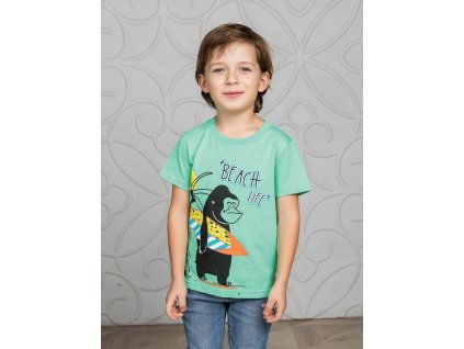 Chlapecké bavlněné triko krátký rukáv
