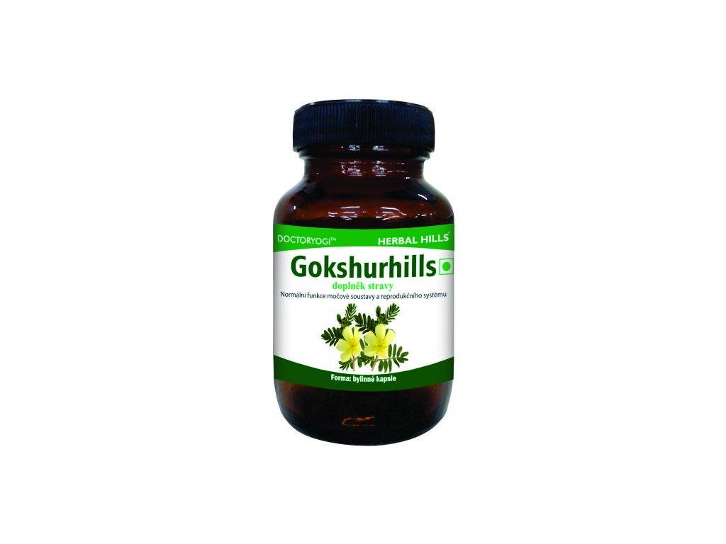 Gokshurhills