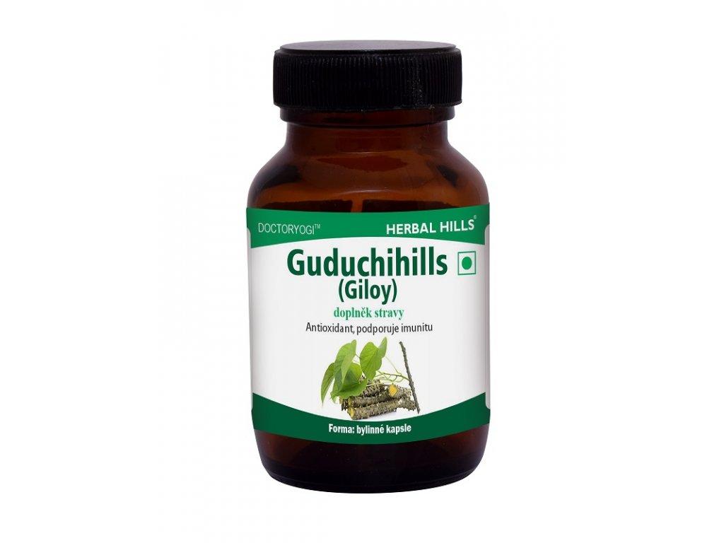 Guduchihills