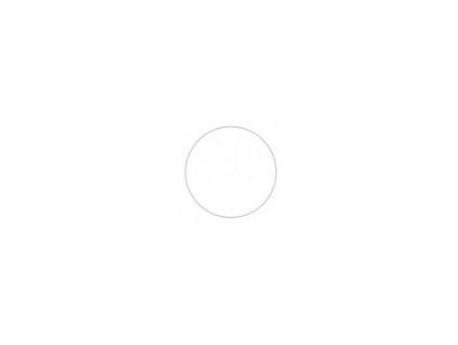 Dvierka na umývačku riadu Florence ZM/45