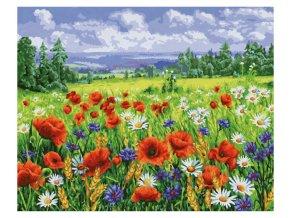 vyr 393blumenwiese malen nach zahlen 609130824 00 2