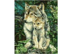 vyr 402mother wolf 609240838 00