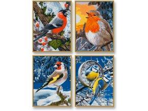 927 zimni ptaci 4 obrazy v baleni 18 x 24 cm