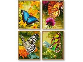 936 motyli 4 obrazy v baleni 18 x 24 cm
