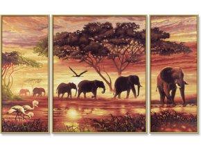 951 afrika sloni karavana 50 x 80 cm