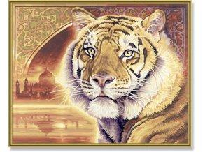 957 bengalsky tygr 40 x 50 cm