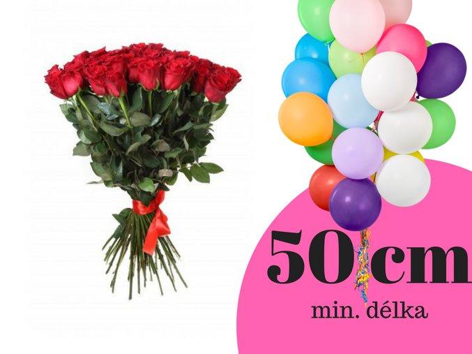 50 cm(10)