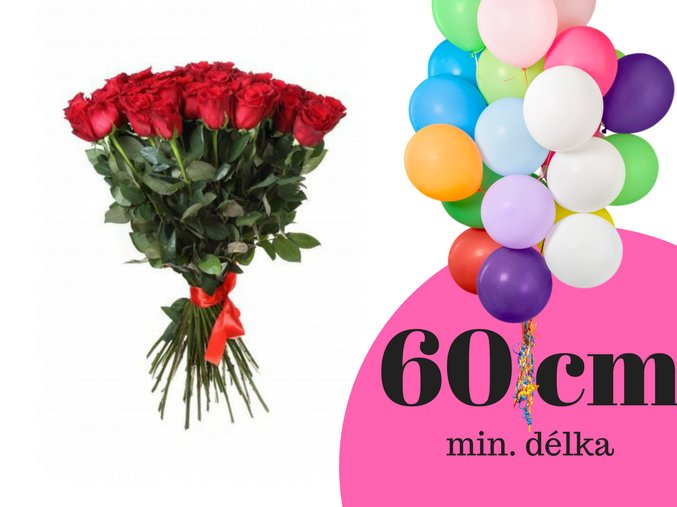 50 cm(9)