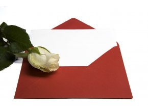 letter and rose concept 1314343