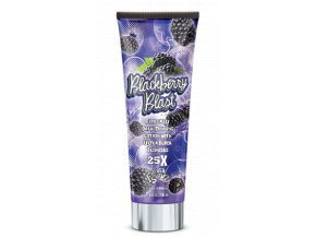 Fiesta Sun Blackberry Blast 236ml