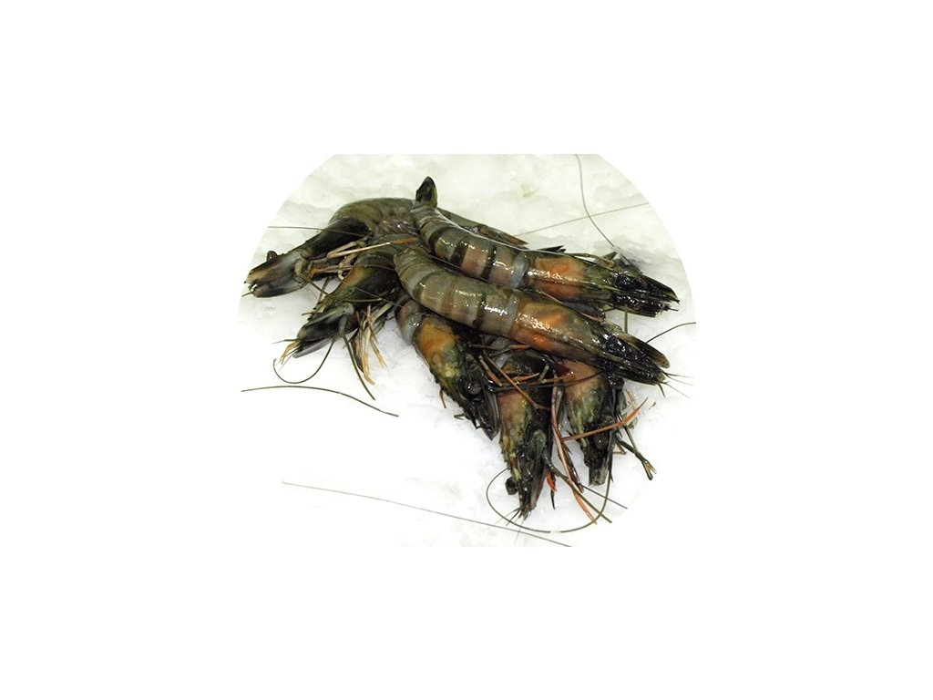 Krevety tygří celé 13/15 ks/kg  800 g