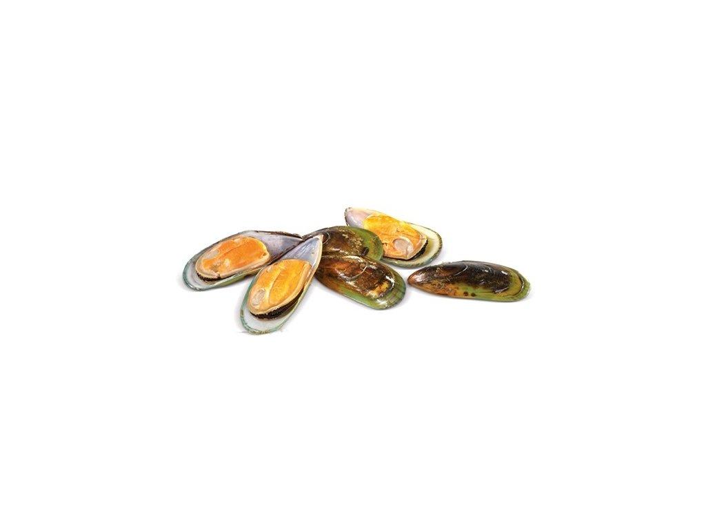 Mušle (slávka) půlené krabička Nový Zéland 30/40ks 1 kg