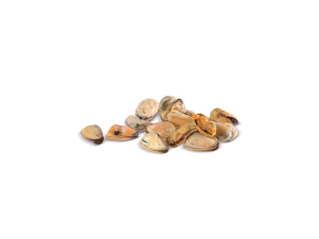 Mušle slávky vyloupané, předvařené 200/300 ks/kg  900g