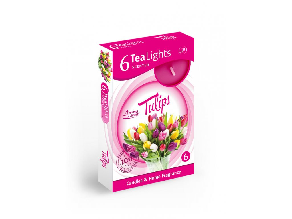 SANTO Čajový Svíčky 6ks Tulips