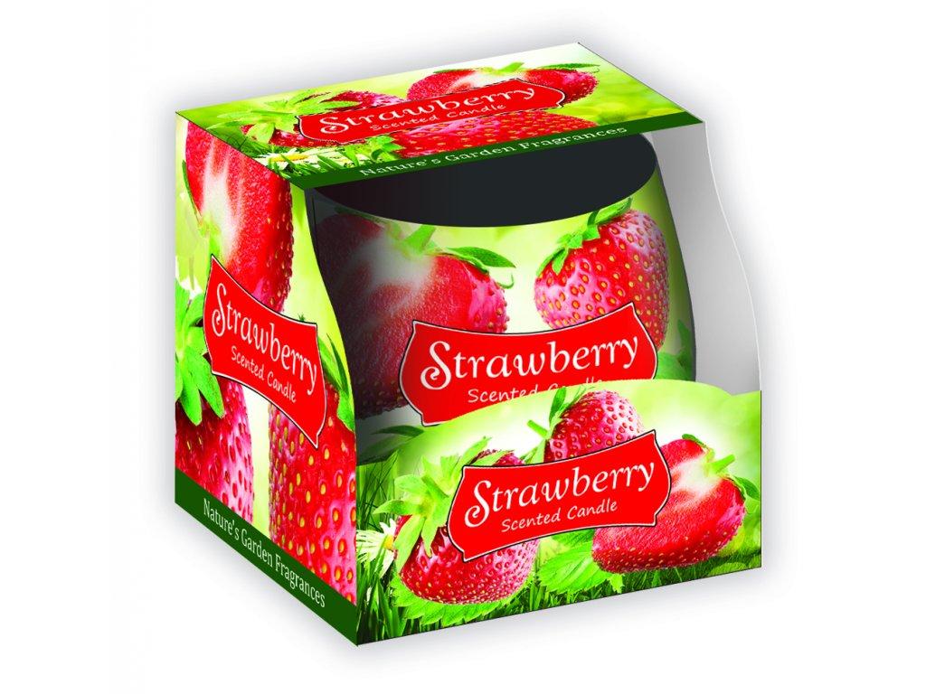 SANTO Vonné Svíčky 100g Strawberry