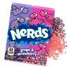 NERDS candy Grape & Strawberry 142g