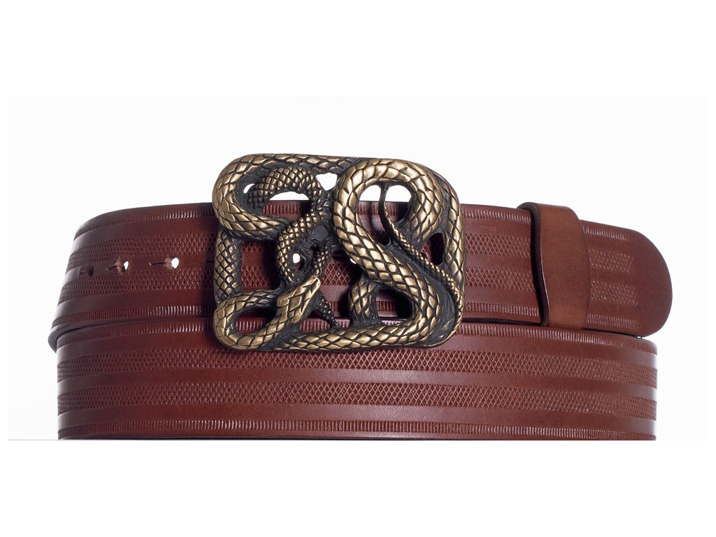 Hnědý pásek had pr