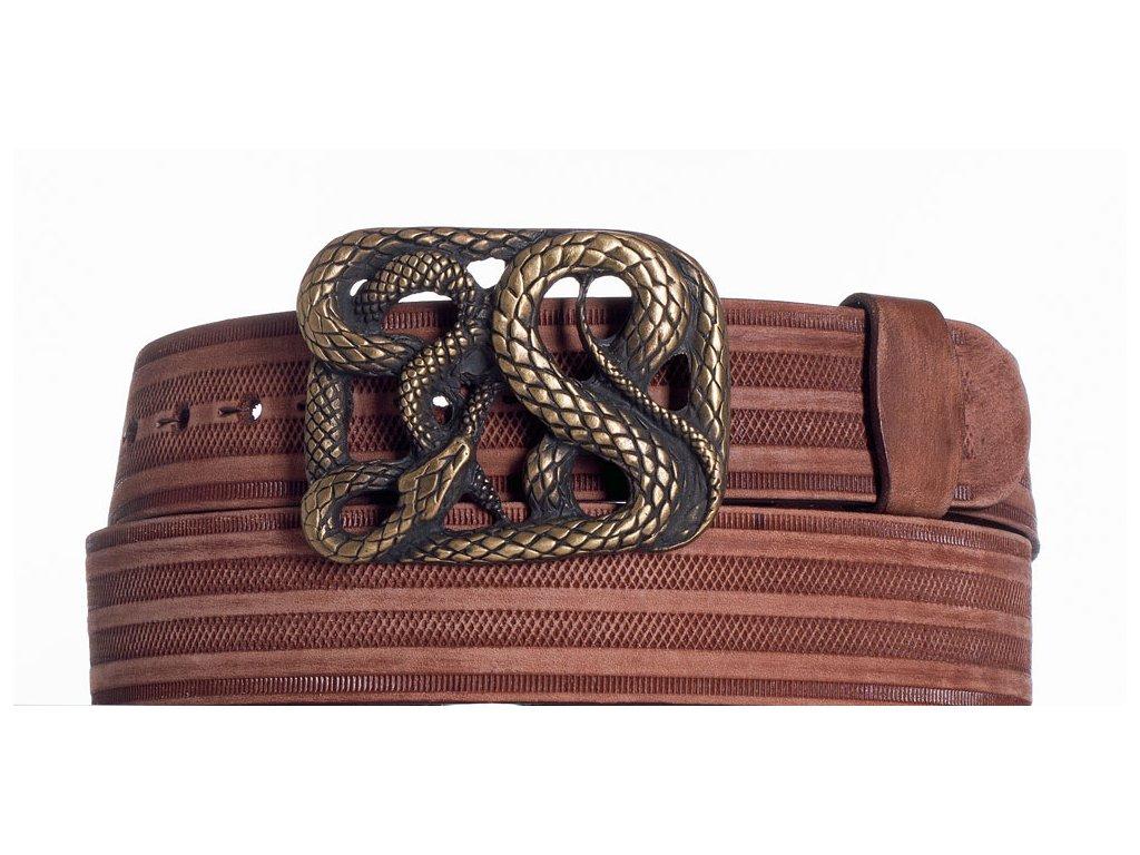 Hnědý pásek had prb