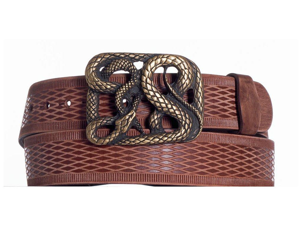 Hnědý pásek had vrb
