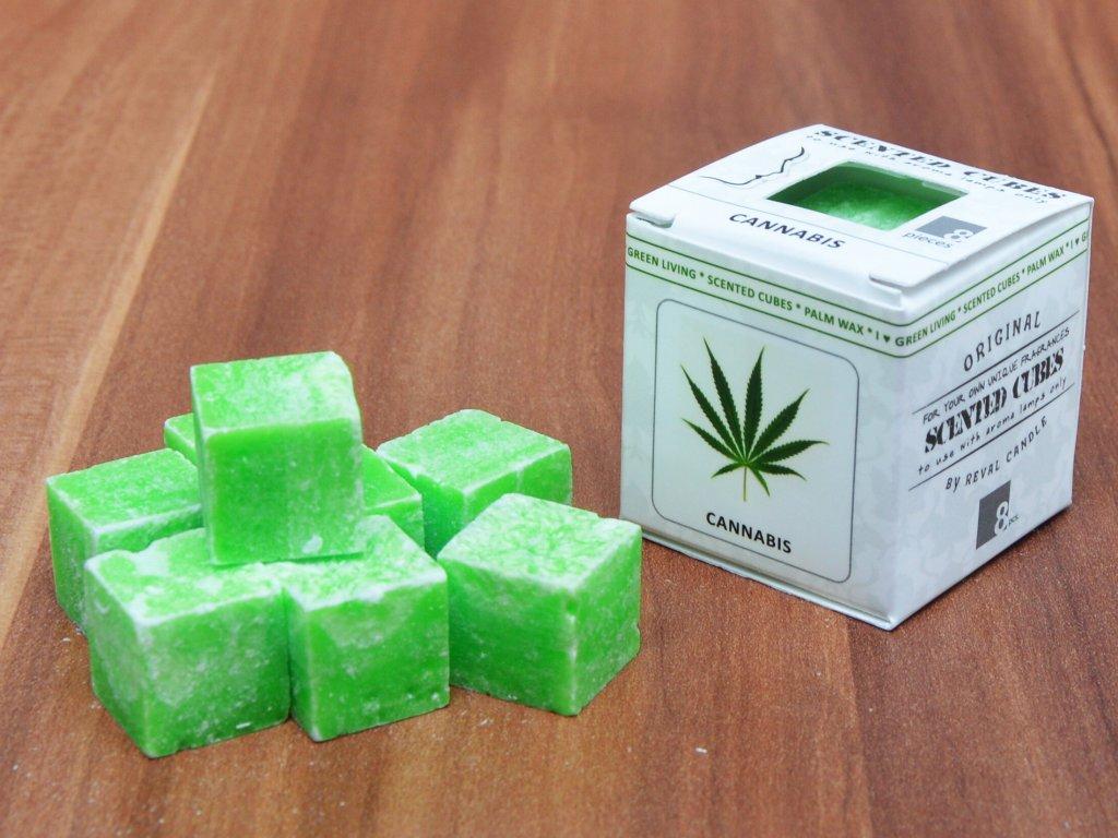 Cannabis konopí