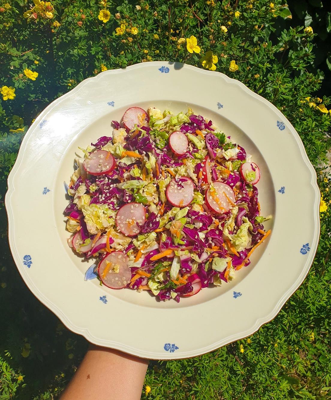 Zelný salát s kapustou a semínky