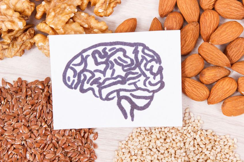 Brainfoods nejen pro zkouškové období