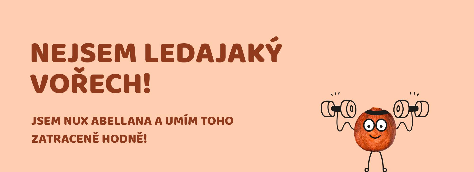Orechy_seminka_obr_blog_1