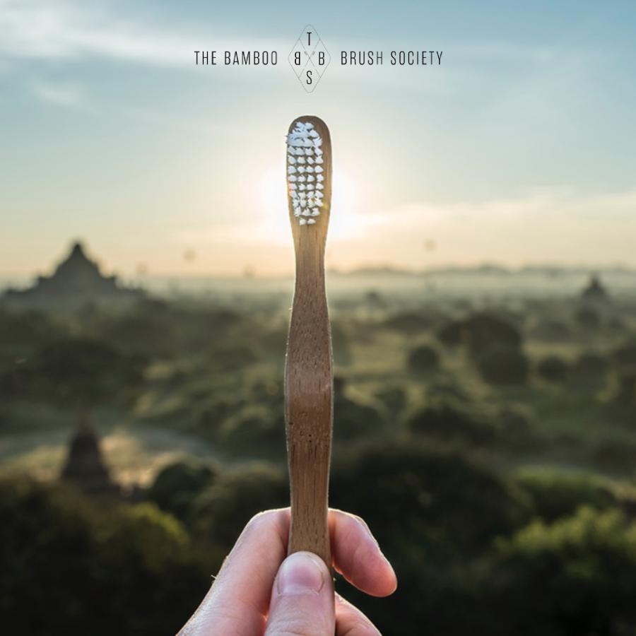 The Bamboo Brush Society