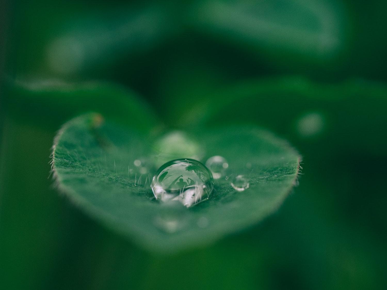 ekologicke-symboly