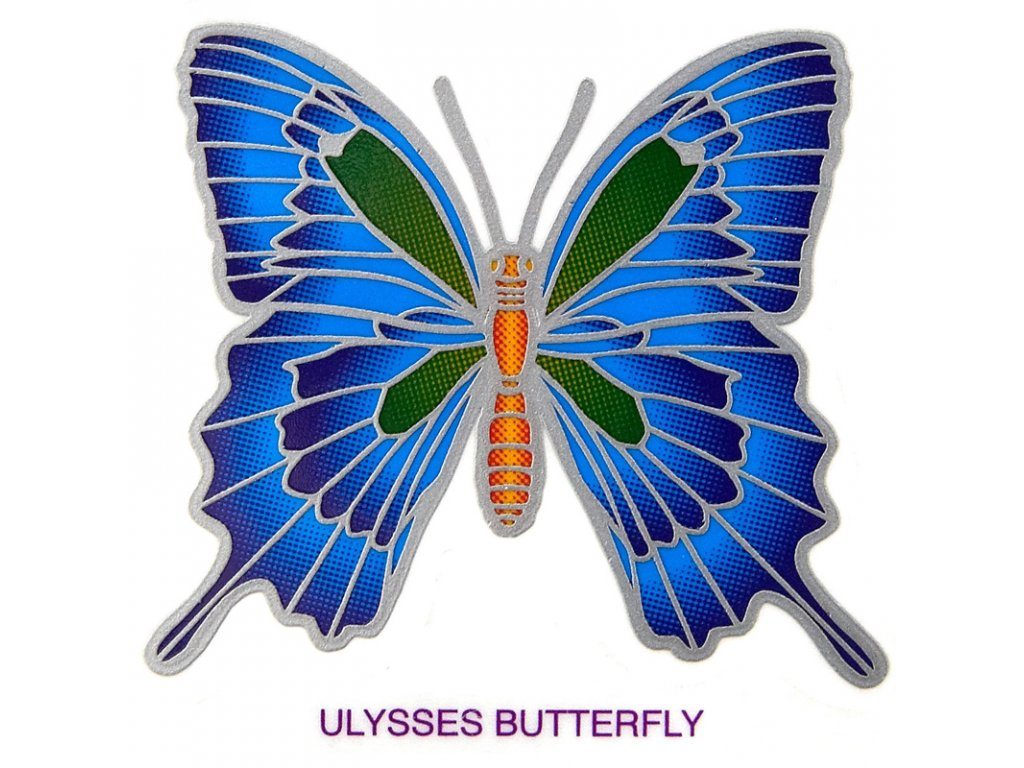 Mandala Sunseal V Ulysses Butterfly