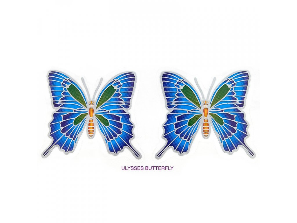 Mandala Sunlight M Ulysses Butterfly