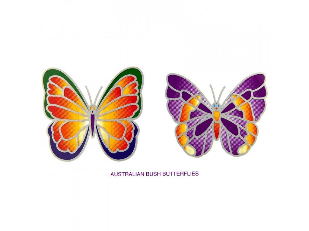 Mandala Sunlight M Australian Bush Butterflies