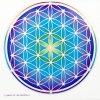 Mandala Sunseal V Flower Of Life