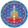 Mandala Sunseal V Chakra Mandala