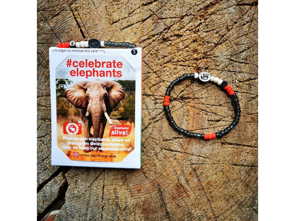 Relate Elephants Alive