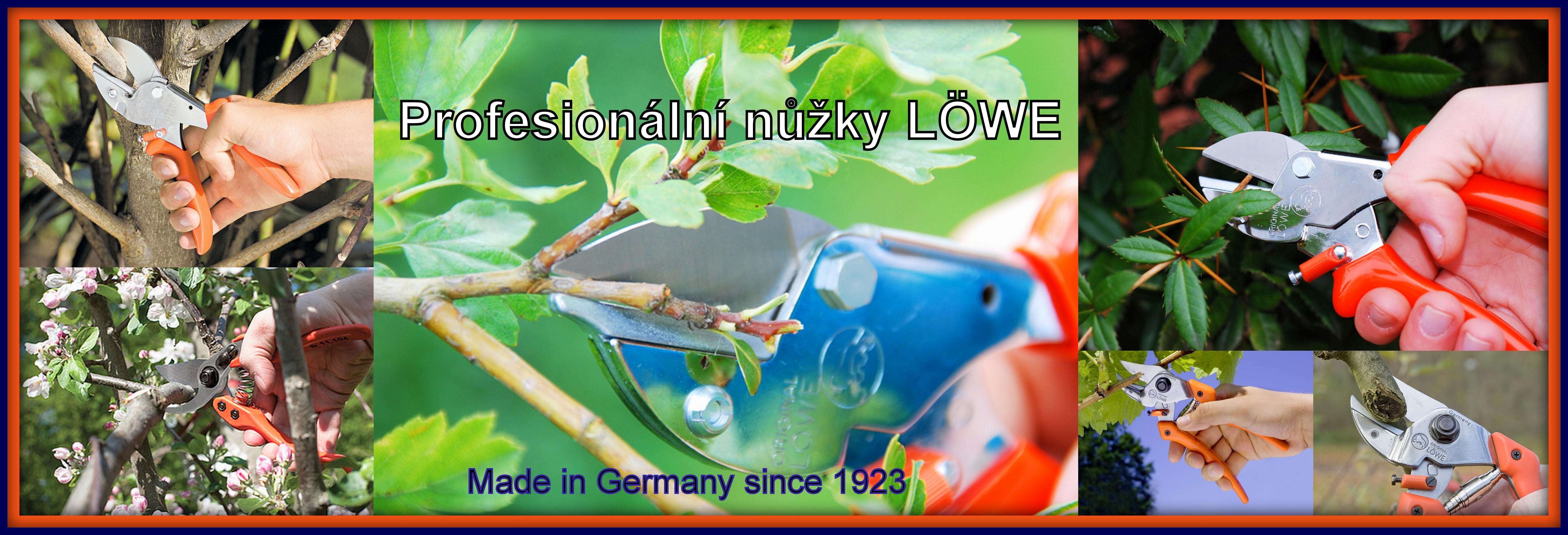 Banner LÖWE AKTION