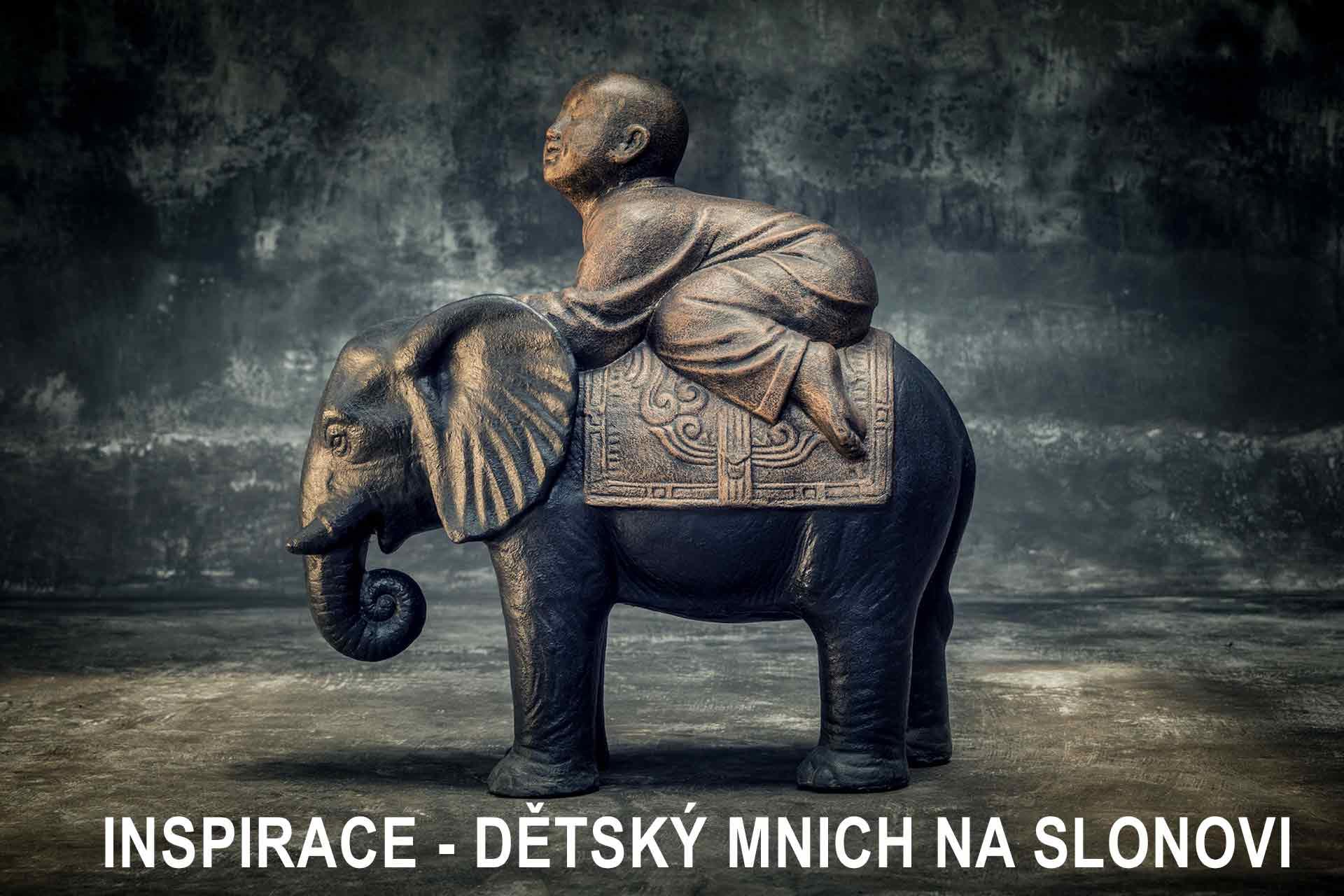 dítě a slon