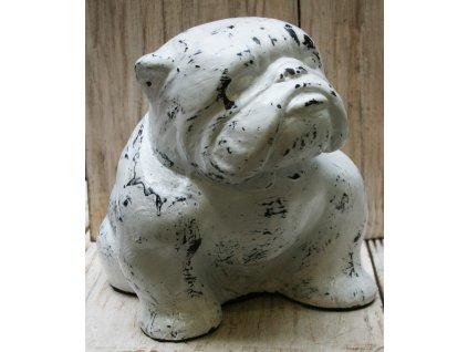 Socha pes - bulldog 36x25x28cm bílá patina