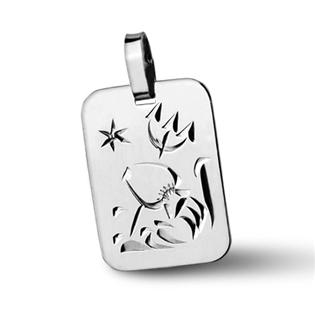 Stříbrný přívěsek - znamení Vodnář