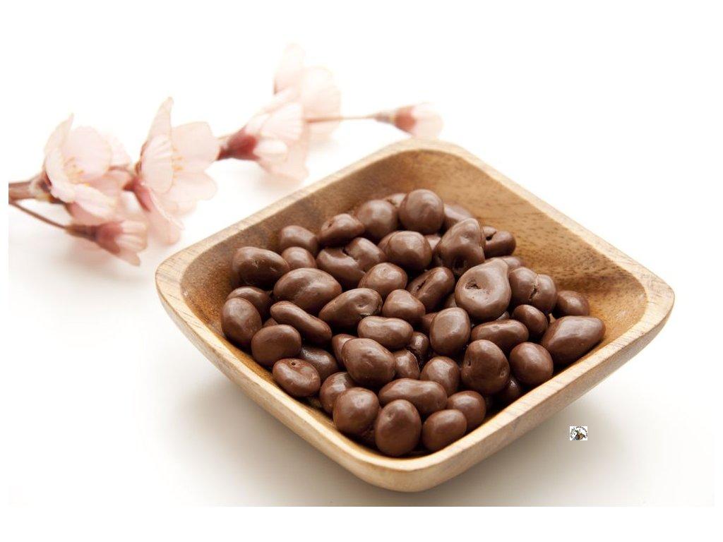 rozinky v mléčné čokoládě