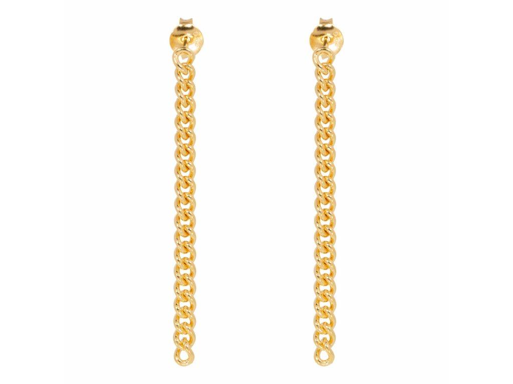 Chunky chain earrings