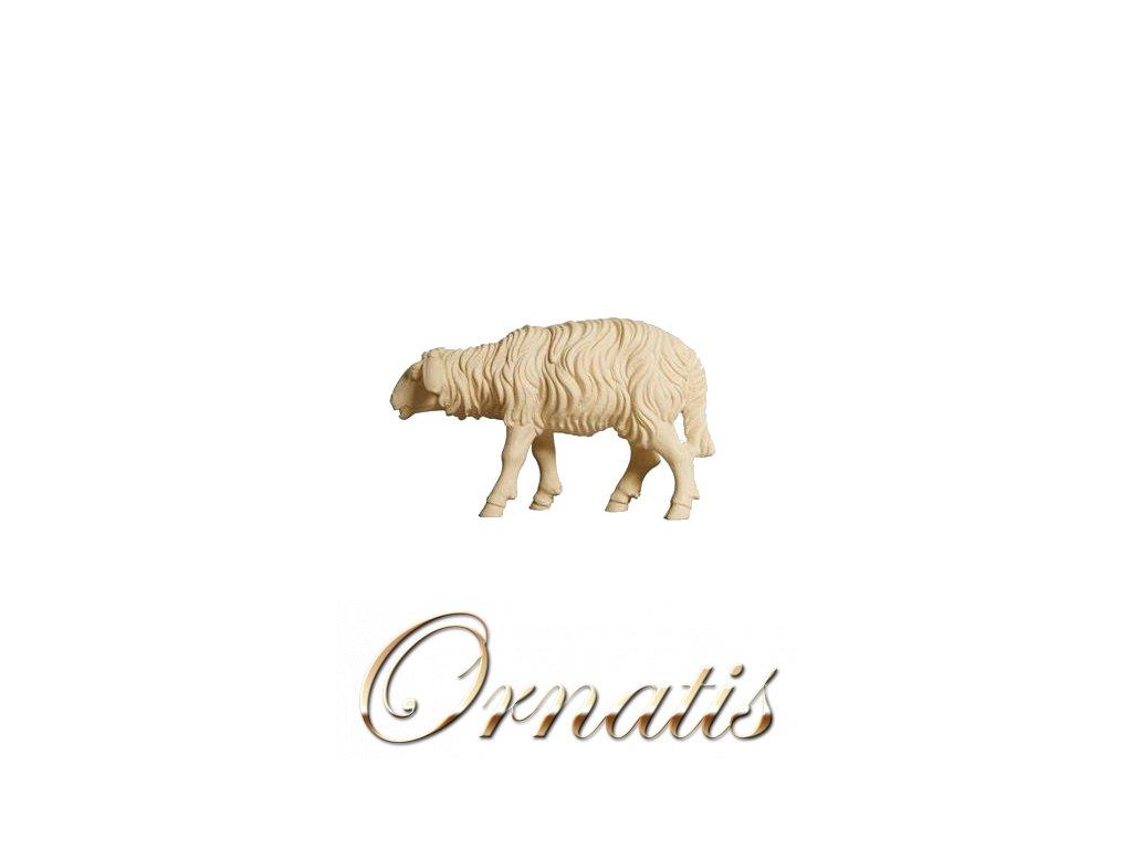 785260 natur ovce soska betlem figurka drevo 0
