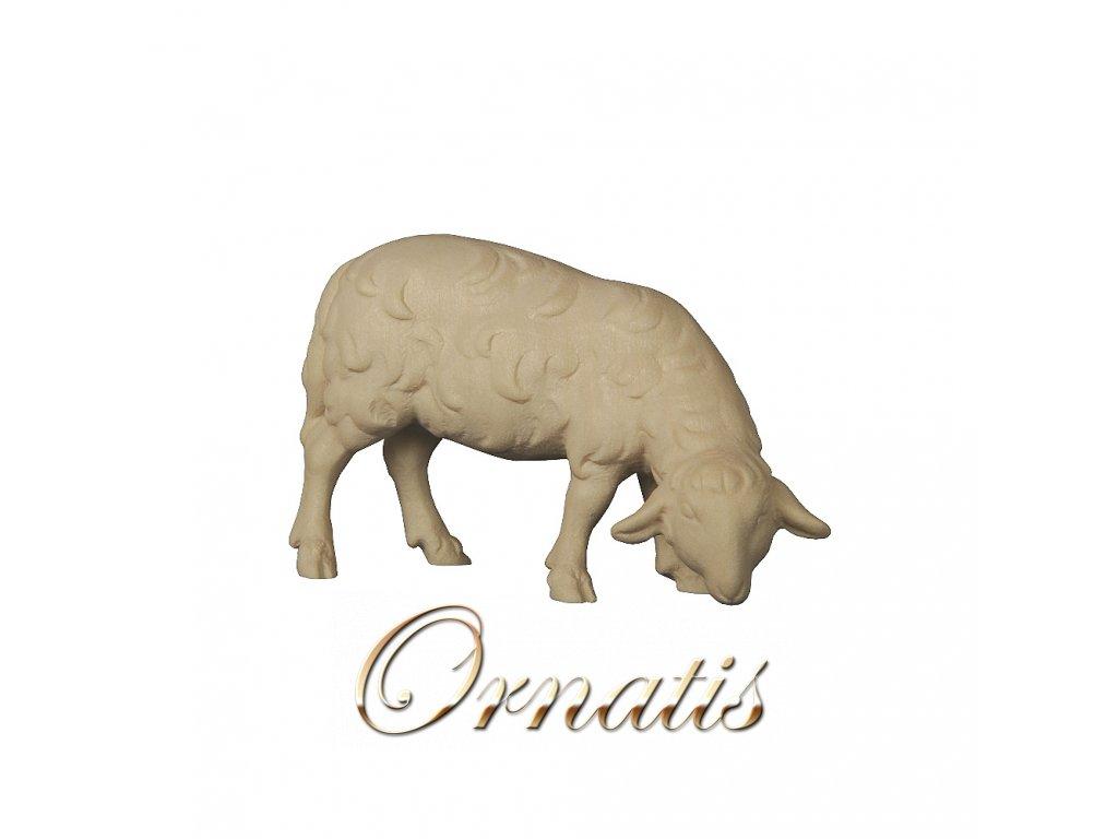 dřevěná vvyřezávaná ovečka prodej betlému dřevěné sochy