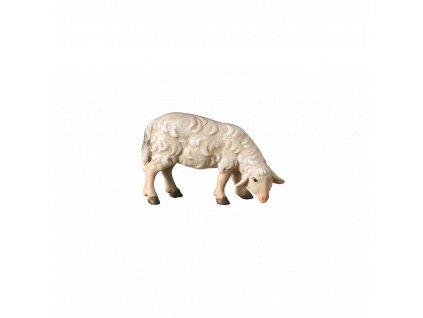 2430 ovce pasouci betlem drevo