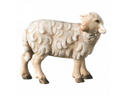 2440 ovce stojici betlem drevo