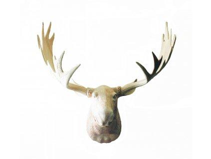 Dřevěná vyřezávaná trofej hlavy srnce