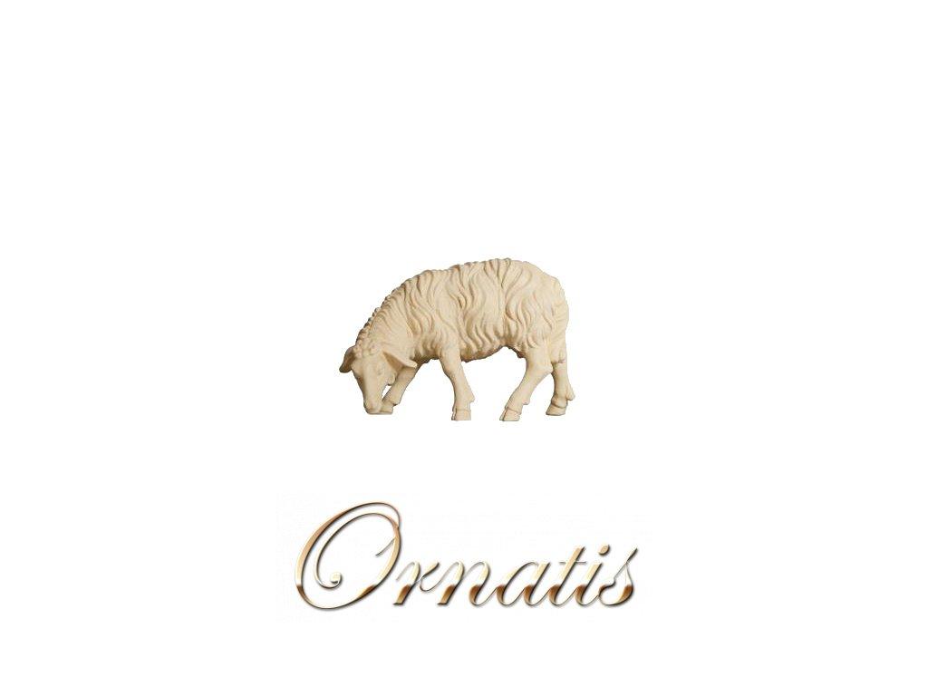 785256 natur ovce soska betlem figurka drevo 0
