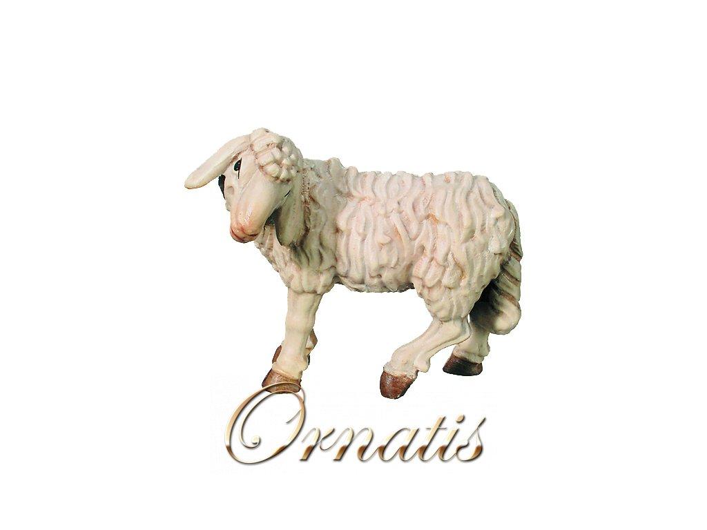 Ovce stojící-prodej betlémů