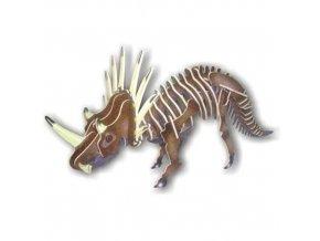Woodcraft Dřevěné 3D puzzle Styracosaurus