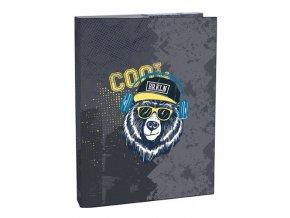 Box na sešity A4 Cool bear STIL